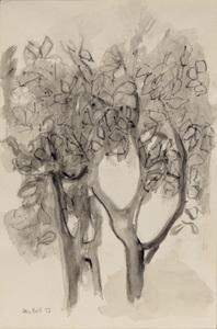 Arvore com folhas - Alice Brill