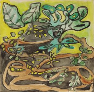 Plantas entrelaçada - Alice Brill