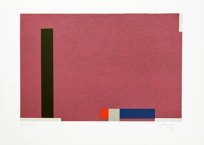 Geométrico 97/100 - Eduardo Sued