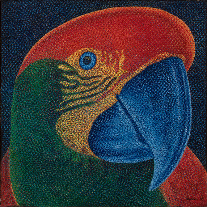 Papagalia-claudio-tozzi