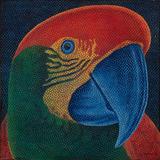 Papagalia - Claudio Tozzi