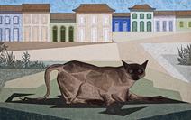 Gato - Clóvis Graciano