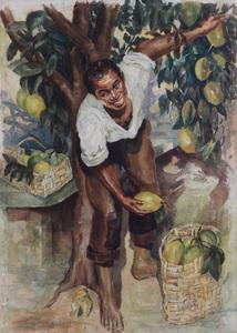 Colhedor de Frutas - Georgina de Albuquerque
