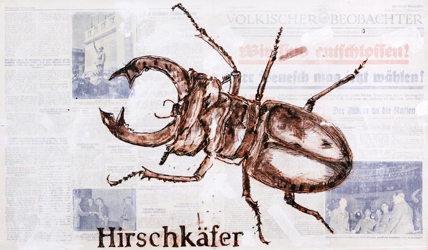 Hirschkafer-jose-de-quadros