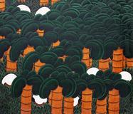 Colhedores entre palmeiras - José Saboia