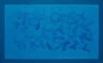 Série Campo de Cor Azul - Amelia Toledo