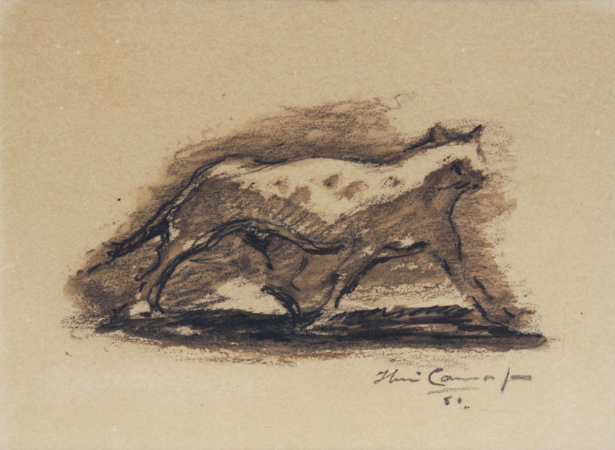 Gato-ibere-camargo