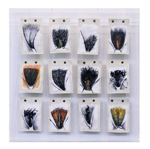 Menstruário Chavascal (12 obras 14x10 cm cada) - João Câmara