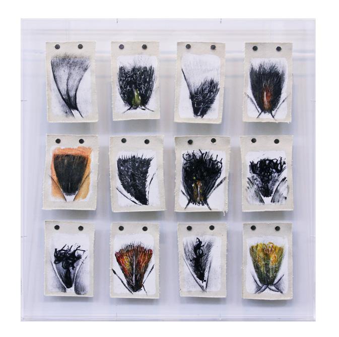 Menstruario-chavascal-12-obras-14x10-cm-cada-joao-camara