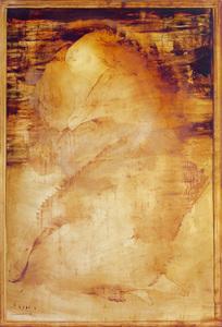 Figura em contemplação - Carlos Araújo