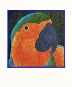 Papagalia - 97/100 - Claudio Tozzi