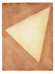 Astrolabe - E.A. - Arthur Luiz Piza