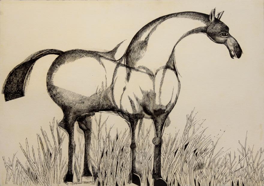 Cavalo-aldemir-martins