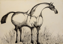 Cavalo - Aldemir Martins
