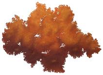 Nuvem degradê laranja - Cássio Lázaro