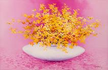 Flores de prosperidade - Yugo Mabe